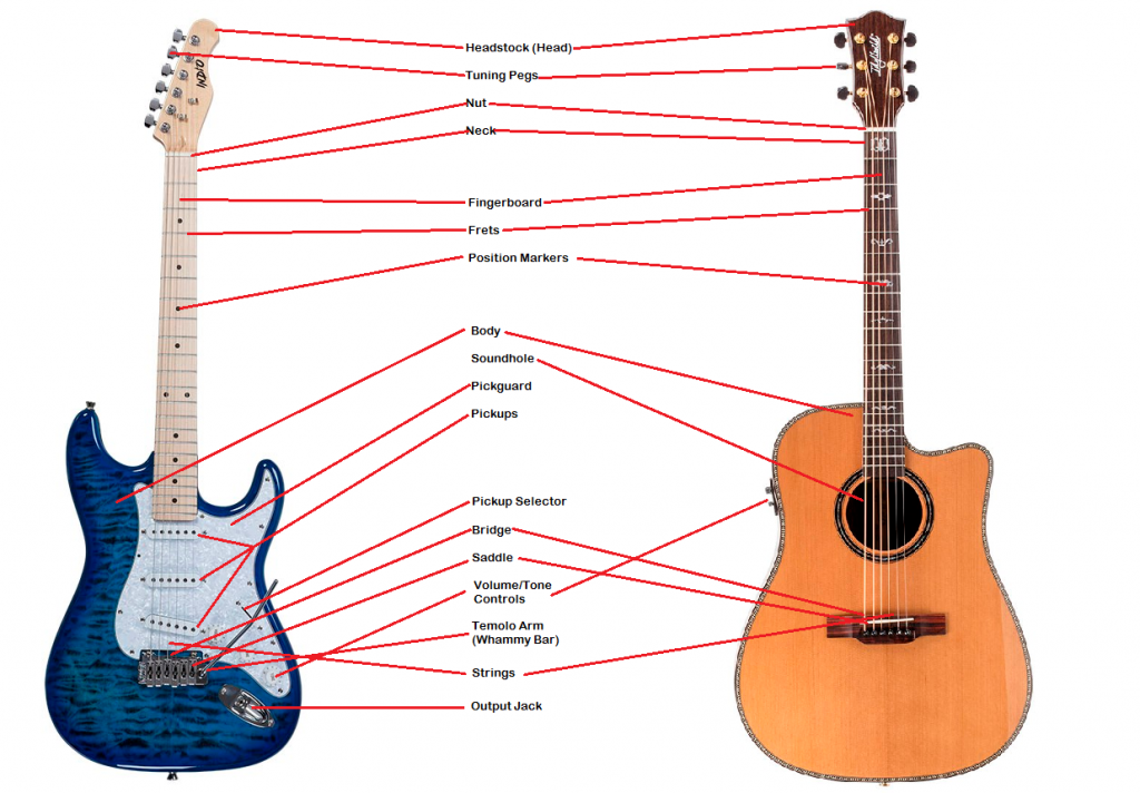 Guitar Set-Up 101 | Monoprice Blog